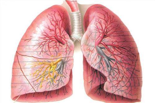 支氣管擴張可以治癒嗎 - 每日頭條