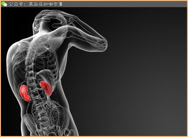 高血壓病損害哪些重要器官? - 每日頭條