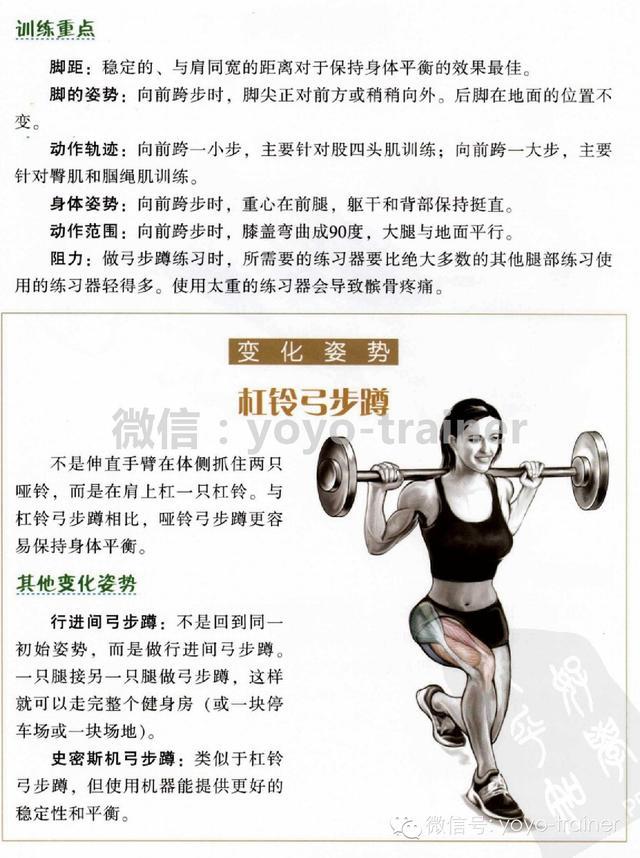 腿部訓練專題|哈克機深蹲,剪蹲,俯臥腿彎舉 - 每日頭條