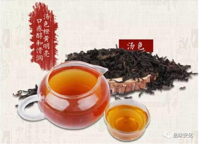 安化黑茶解惑21問 - 每日頭條