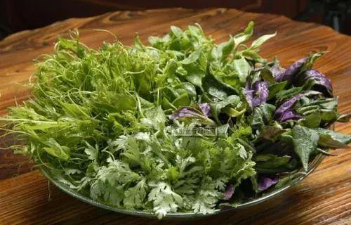 春天來了。最貼心的挖野菜指南。快看怎麼吃! - 每日頭條