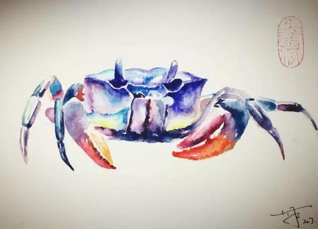 水彩私享之小螃蟹 - 每日頭條