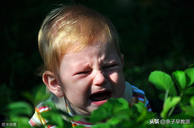孩子害怕昆蟲怎麼辦。作為家長如何幫孩子消除恐懼 - 每日頭條