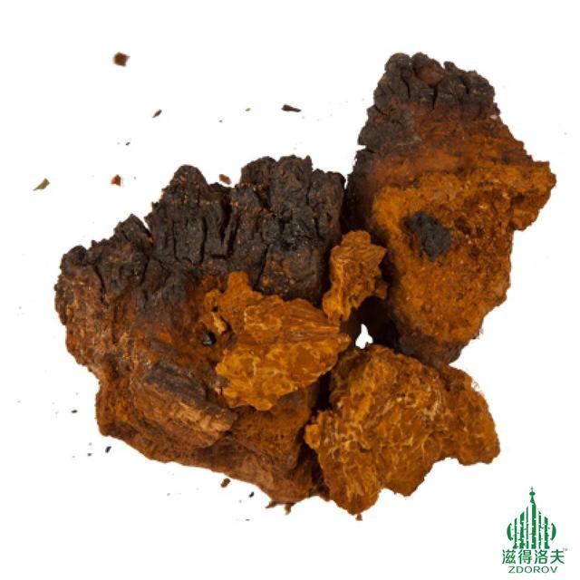 白樺樹茸(樺褐孔菌)價格多少錢一斤? - 每日頭條
