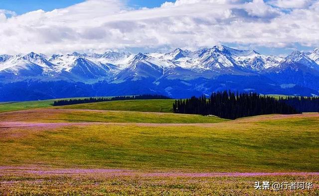 夏季來新疆旅遊。最適合去的八個地方。2019年北疆伊犁旅遊攻略! - 每日頭條