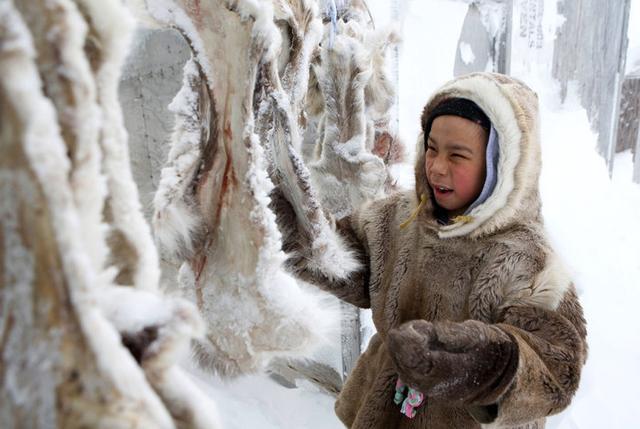 生活在地球最北吃生肉的人。他們的生活環境正遭到破壞 - 每日頭條