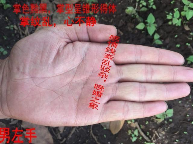 手相中右手斷掌對婚姻的影響,左手斷掌對事業的幫助,手出亂紋危 - 每日頭條