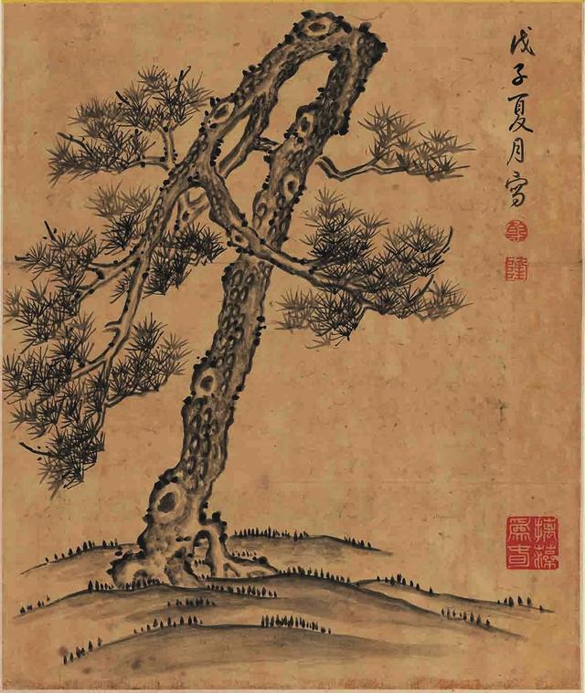 時人不識凌雲木。直待凌雲始道高——歷代松樹詩詞選粹 - 每日頭條