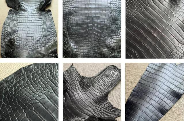 鱷魚皮介紹及其護理方法 - 每日頭條