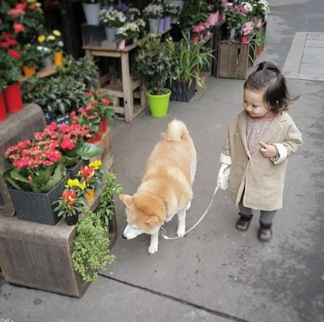 2歲女兒告訴媽媽我是你以前養過的狗狗,說出的證據讓她不得不信! - 每日頭條