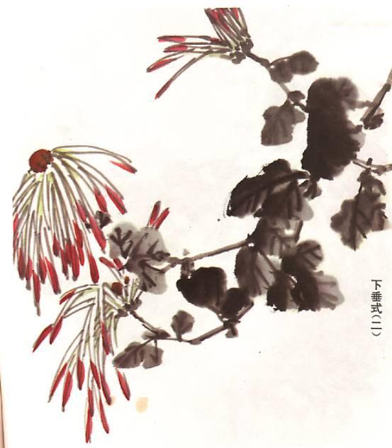怎麼樣畫好菊花 - 每日頭條