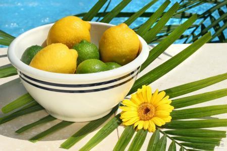 關於檸檬養生的6大功效。你吃對了嗎 - 每日頭條