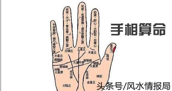 手紋掌紋學問大。正確認識手相的完整介紹 - 每日頭條
