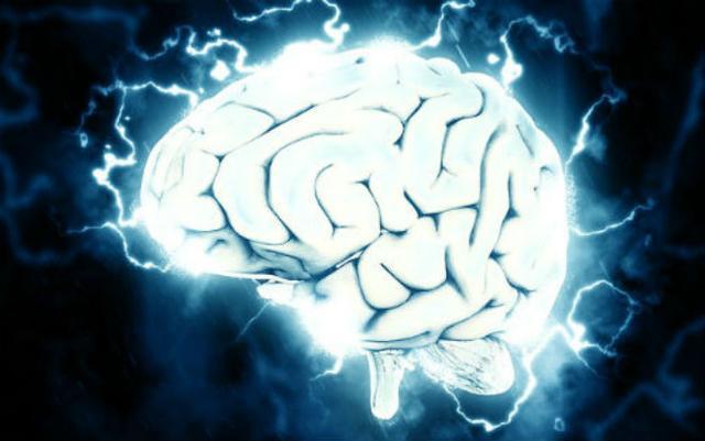 記憶存儲並不需要突觸強化!諾獎得主PNAS發表顛覆性發現 - 每日頭條