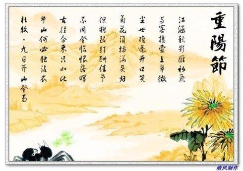 你可知。重陽節為何要登高賞菊? - 每日頭條