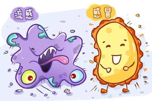 【健康科普】感冒也要「區別對待」!市中研附院專家教您區分流感和普通感冒 - 每日頭條