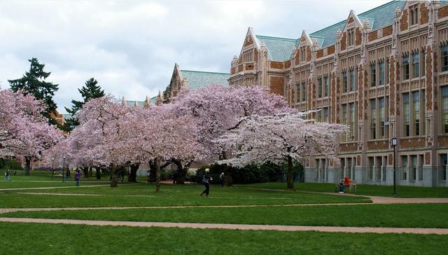 美國華盛頓大學排名 各榜單排名介紹 - 每日頭條