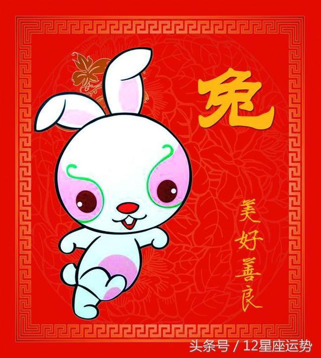 屬兔的人在哪天出生,天生就是有福之人,註定會生活富貴,大富命 - 每日頭條