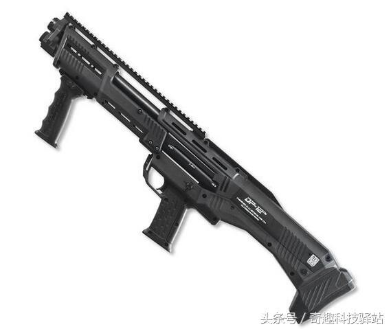 DP-12雙管霰彈槍:容量大,一支只要一千多美元 - 每日頭條