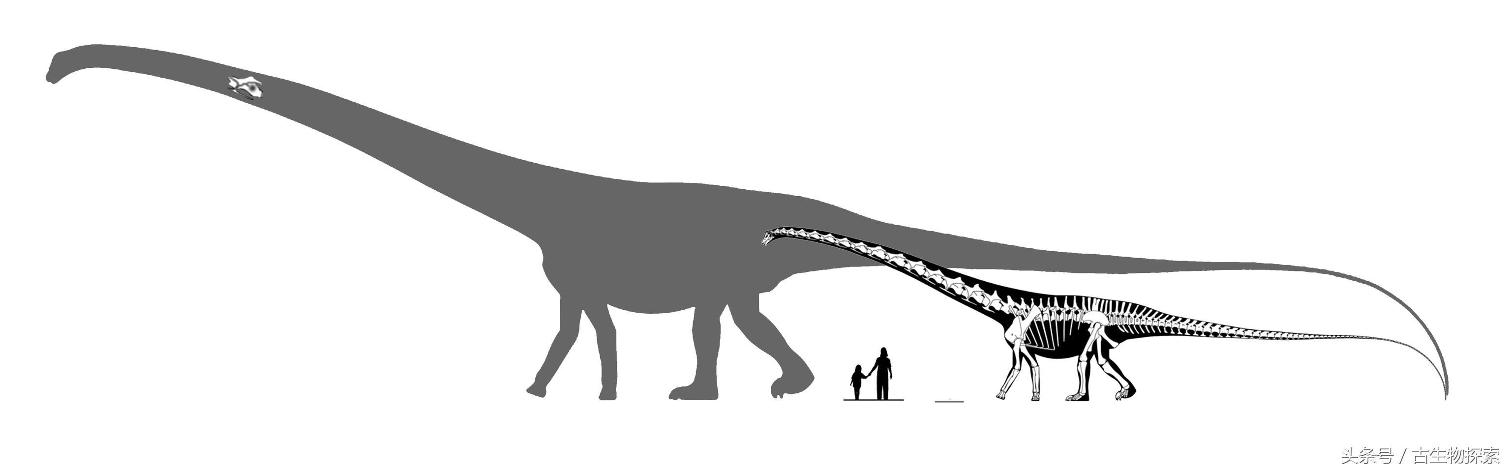 科學家宣稱60米長的易碎雙腔龍並不存在 - 每日頭條