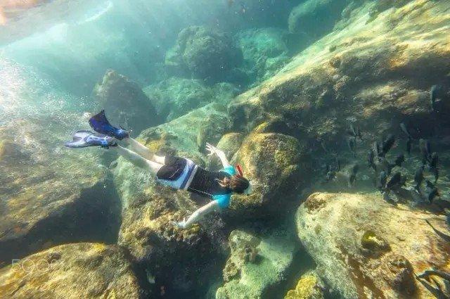 海覽世界:盤點全球最美十大潛水聖地 - 每日頭條