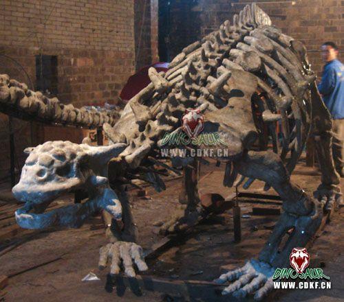 浙江首次發現甲龍的甲板化石 - 每日頭條