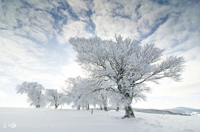 描寫雪景的唯美古詩句,美到心碎的詩詞佳句 - 每日頭條
