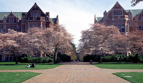 華盛頓大學雙錄取 - 每日頭條