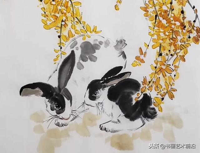 2019年屬兔人·萬事順意轉好運 - 每日頭條