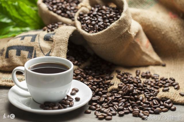 帶你了解咖啡是什麼。去哪喝。喝什麼——咖啡小白完全進階指南 - 每日頭條
