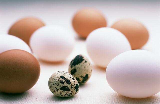含硒高的食物 四種最值得吃 - 每日頭條