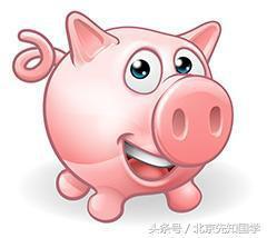 豬寶寶起名用什麼字好 - 每日頭條