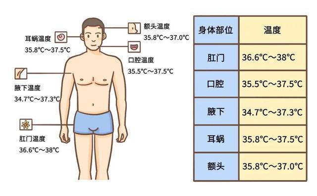 體溫多高算是發燒?關於體溫的 5 個問題。一篇講清 - 每日頭條