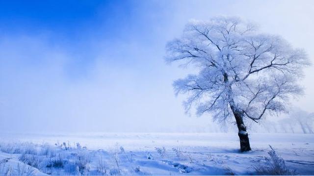 冬季的饋贈—霧凇島 - 每日頭條
