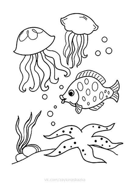 寶貝學畫畫 海洋生物卡通簡筆畫 小魚 章魚 海馬 鯨魚烏龜 塗色頁 - 每日頭條