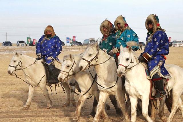 這種馬能在80°的溫差內馳騁縱橫,只產在郭靖的安達拖雷封地 - 每日頭條