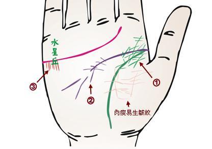 小掌紋大健康:禪緣道長教你掌紋識健康(三) - 每日頭條