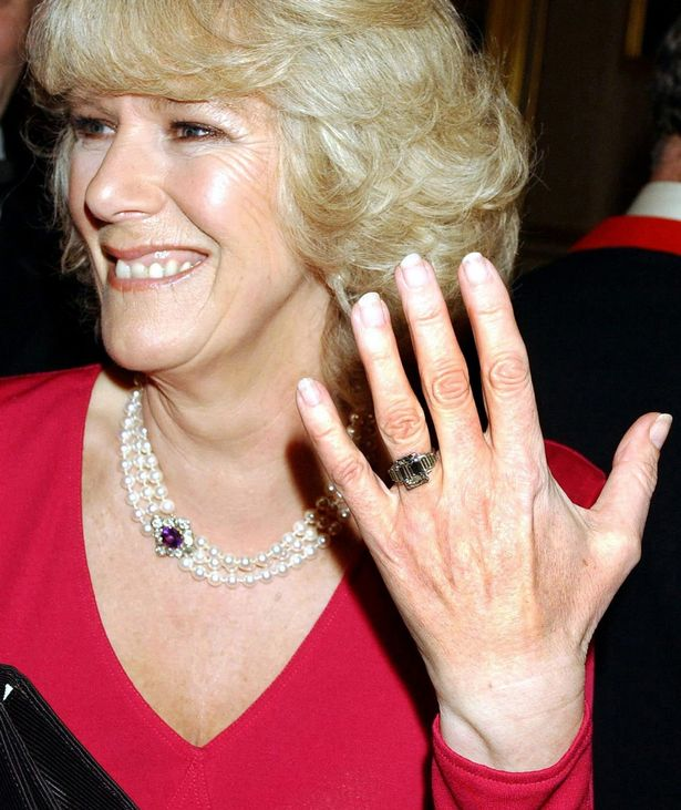 Camilla still haunted by Princess Diana every day as ...