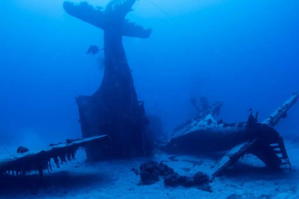 Wallpaper Border Falling Off Incredible Images Show Underwater Graveyard Of World War