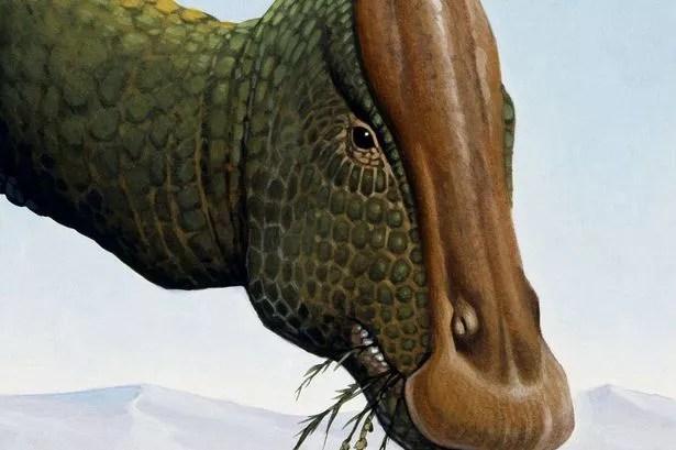 Bilderesultat for duck billed dinosaur