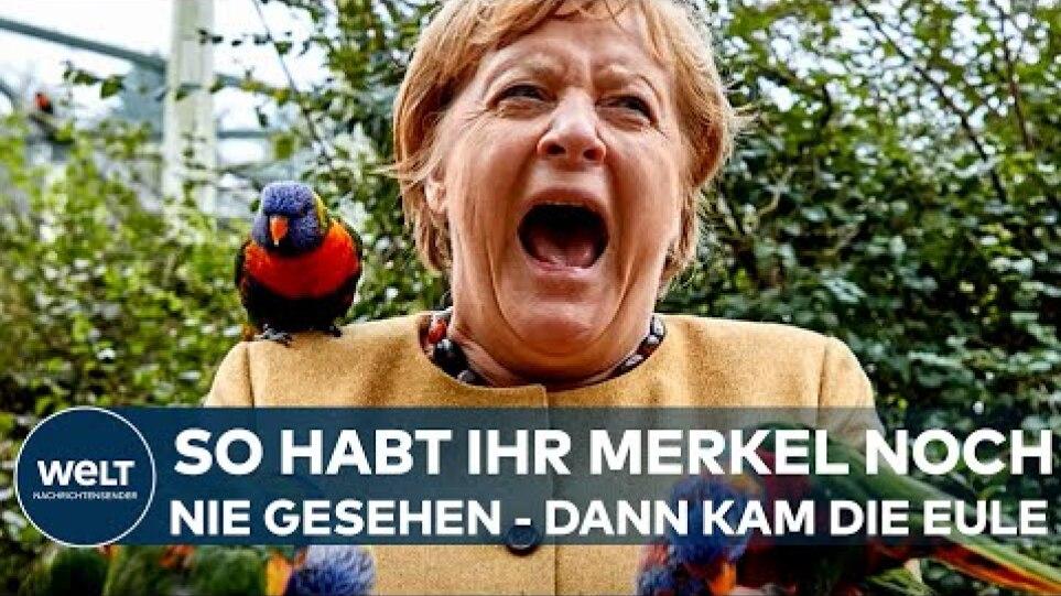 BUNDESTAGSWAHL 2021: Kurios! So haben Sie Kanzlerin Angela Merkel noch nie gesehen