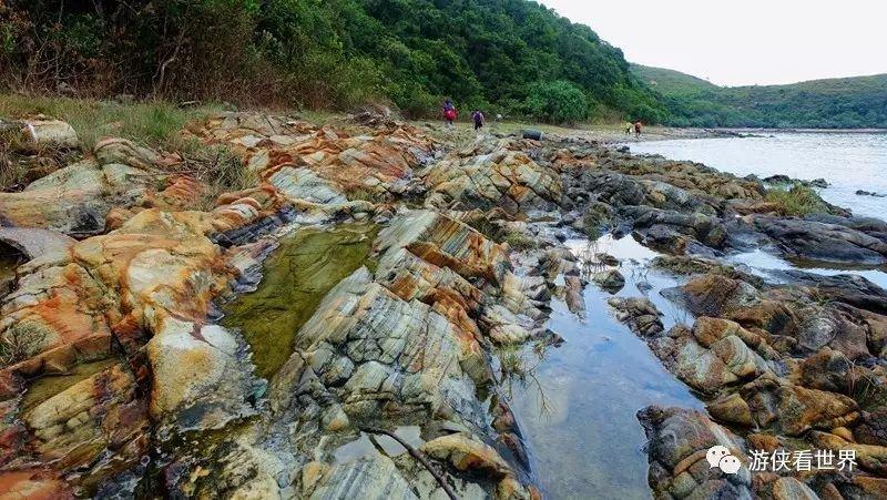 香港:荔枝莊深涌榕樹澳徒步 - 壹讀