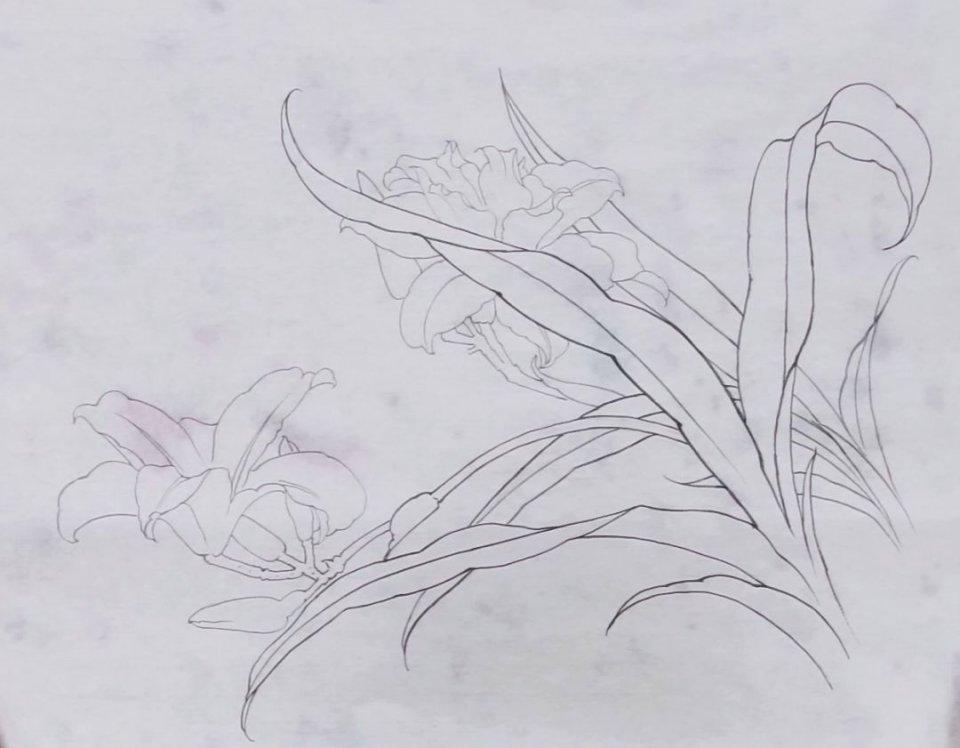 國畫教學 | 畫工筆花卉你選擇生宣還是熟宣?萱草的畫法課稿送你 - 壹讀