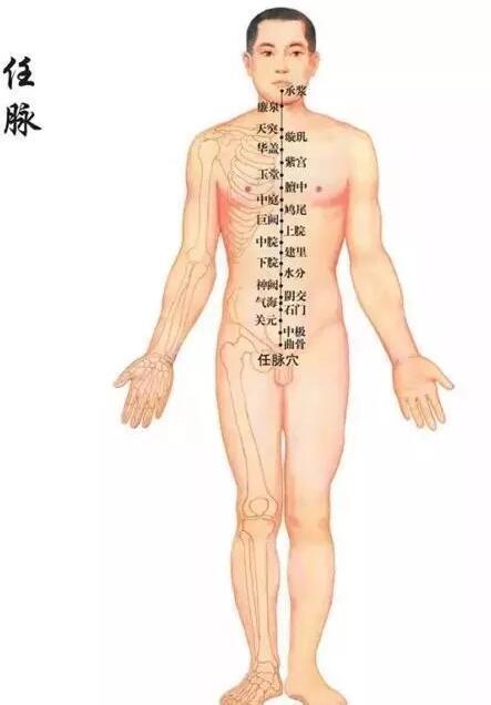 人體14條經絡你知多少?趕緊收藏學習下 - 壹讀