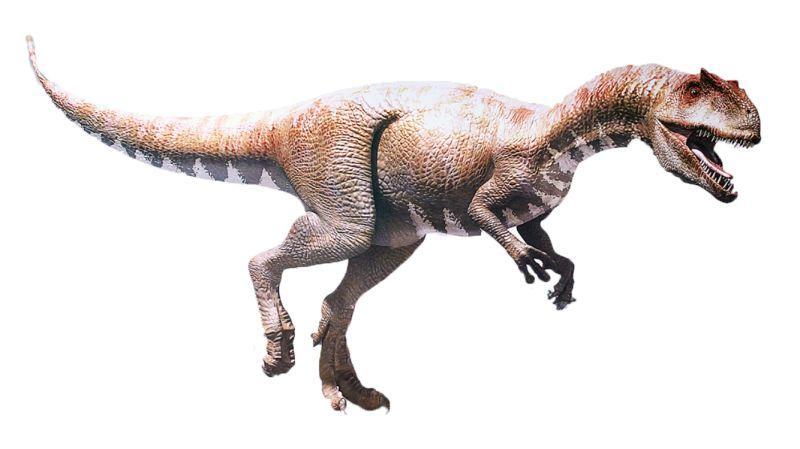 【恐龍百科】侏羅紀——恐龍的鼎盛時期 - 壹讀