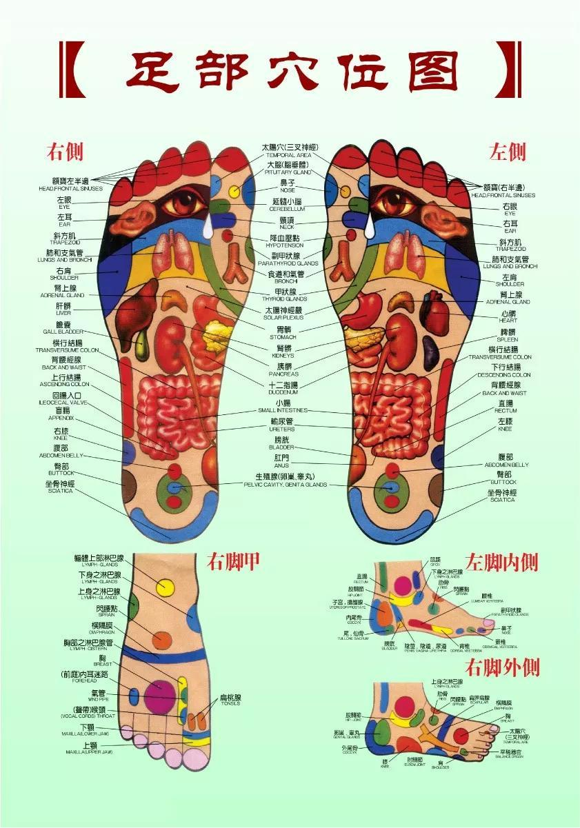 都說腳底穴位多,怎麼按摩利於身體健康,你知道嗎? - 壹讀