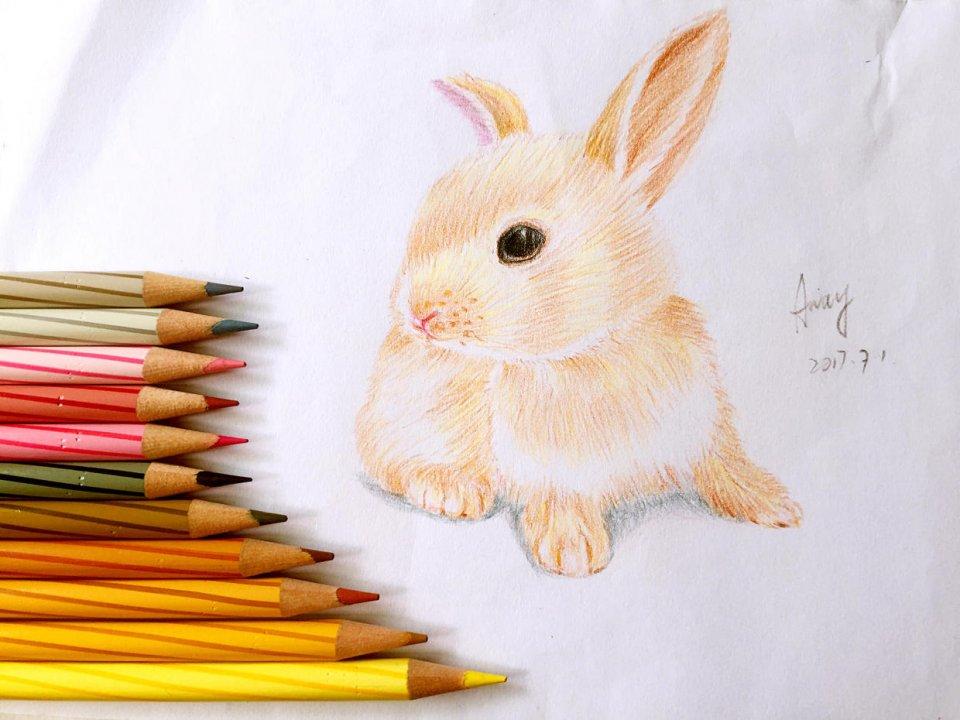 意趣文長安之我的色鉛筆自學記錄 - 壹讀