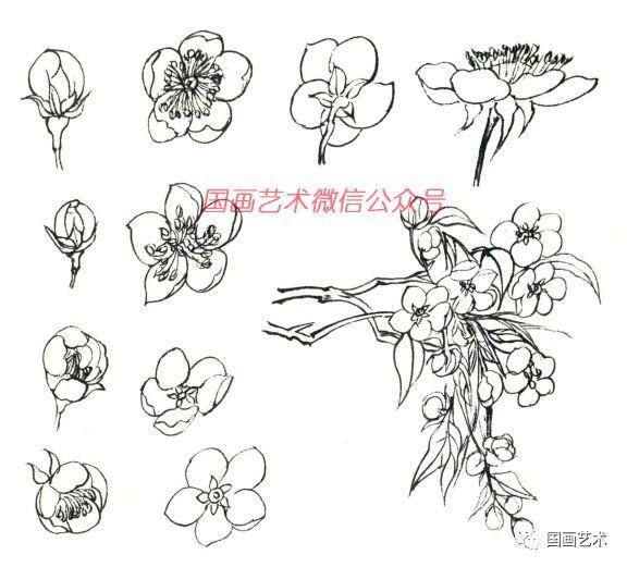 圖文教程:梨花的各種畫法 - 壹讀
