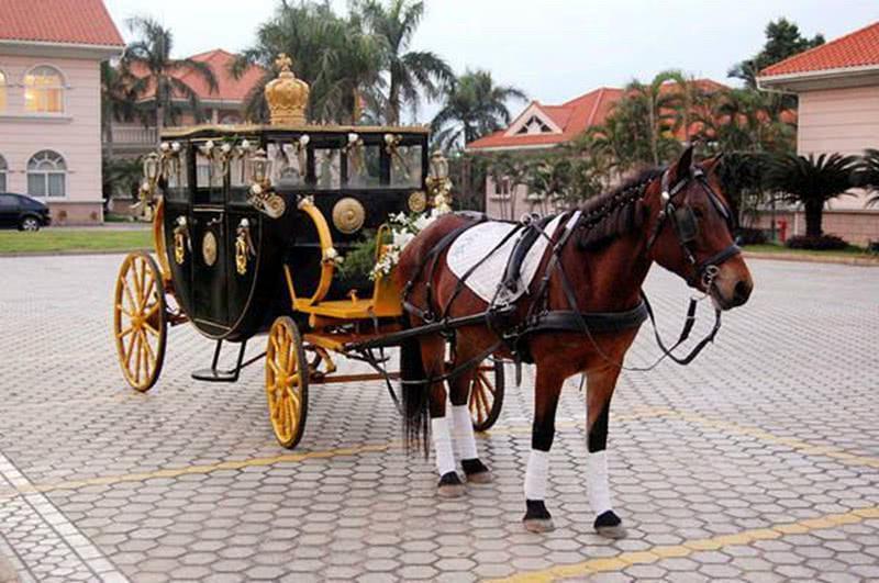 為什麼中國古代的馬車都是兩個輪子,國外的卻是四個輪子? - 壹讀