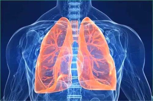 領募:肺部積水是不是得了癌癥? - 壹讀